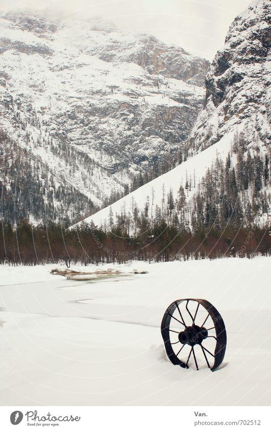 Hast du'n Rad ab? Himmel Natur weiß Pflanze Baum Landschaft Wolken Winter kalt Berge u. Gebirge Schnee See Felsen Nebel Seeufer