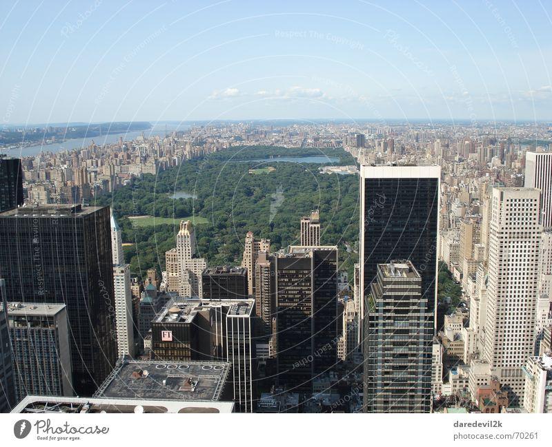 Central Park grün New York City Stadt Hochhaus Haus Amerika Himmel