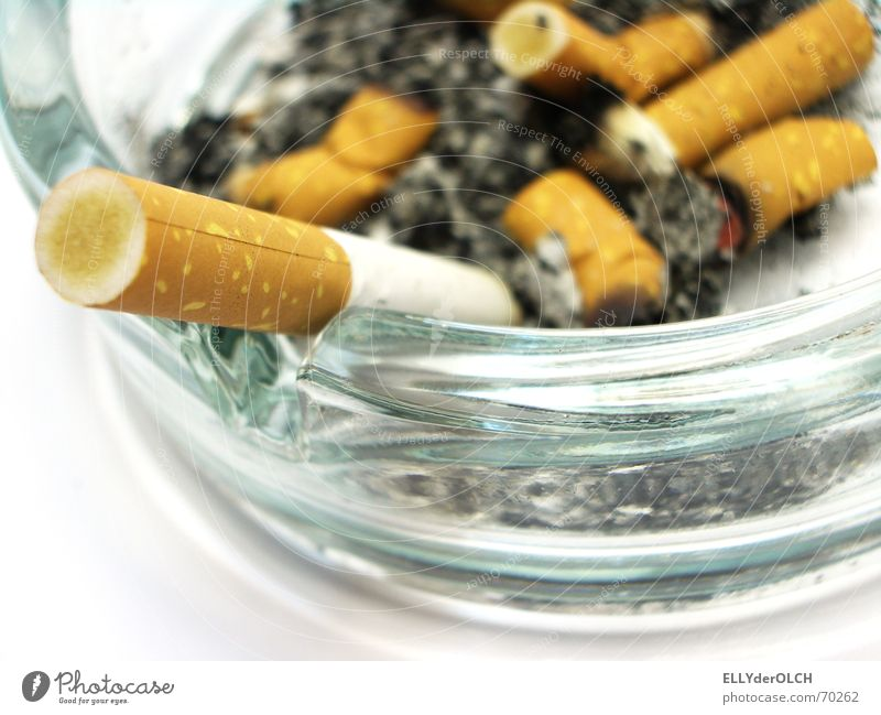 Raucher sterben früher [1] Zigarette Rauchen Aschenbecher Teer ungesund Nikotin Glas Geruch Übelriechend Zigarettenstummel Nichtraucherschutz Zigarettenasche