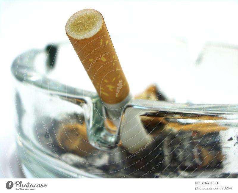 Raucher sterben früher [2] Zigarette Rauchen Aschenbecher Teer ungesund Nikotin Glas Geruch Übelriechend Zigarettenstummel Filterzigarette gesundheitsschädlich