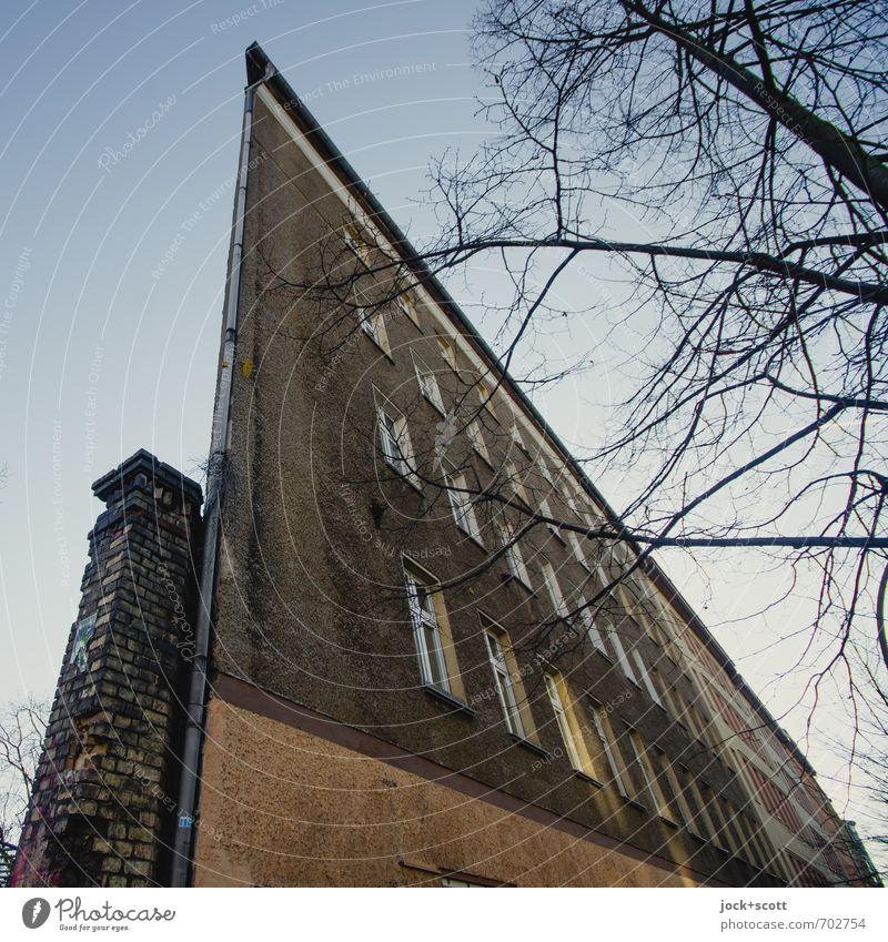Front Himmel Baum Winter Fenster Stil grau Zeit Fassade Kraft groß Perspektive Spitze bedrohlich Wandel & Veränderung Ast einzigartig