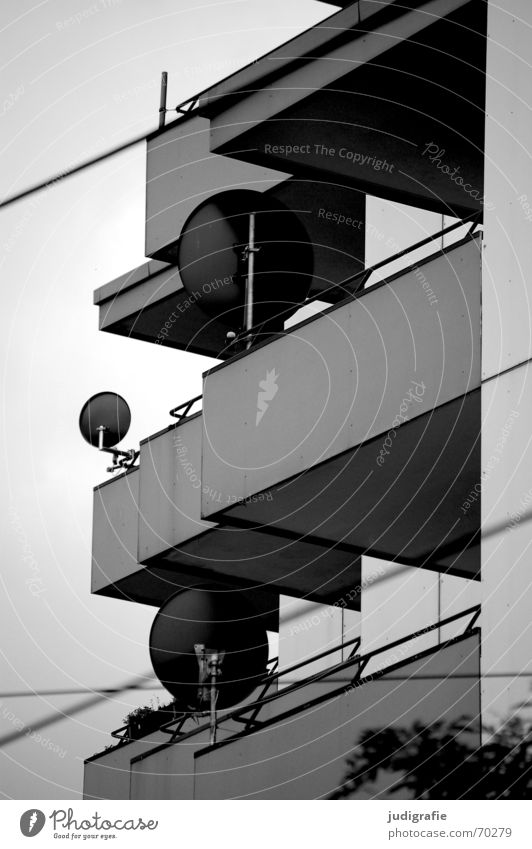 Balkone Stadt Satellitenantenne Fernsehen Wohnung Neubau Haus Gebäude Beton grau trist Hannover Leitung Straßenbahn Aussicht Begrüßung Häusliches Leben Linde