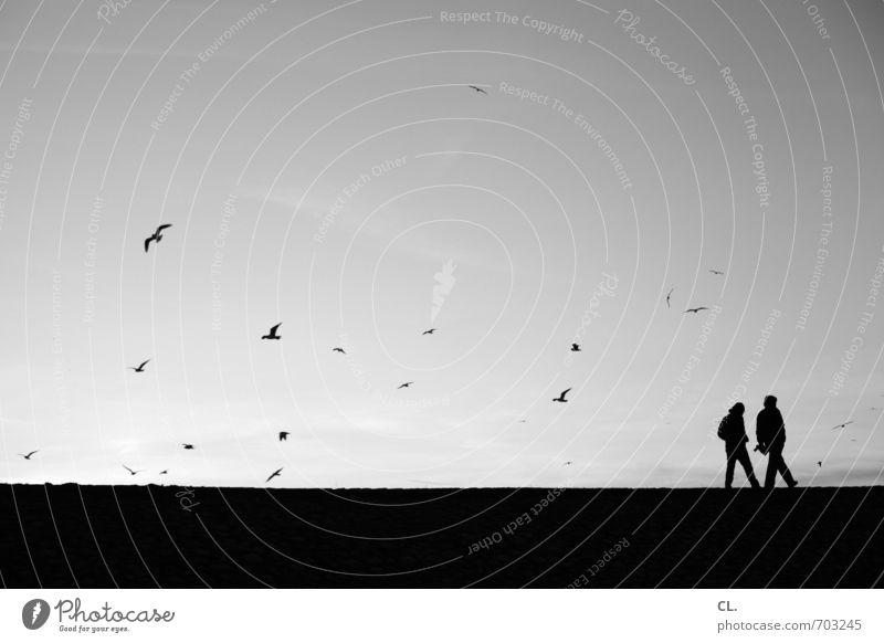 am rhein Mensch Himmel Natur Ferien & Urlaub & Reisen Erholung Landschaft ruhig Tier Umwelt Wege & Pfade Freiheit gehen Freundschaft Vogel Zusammensein