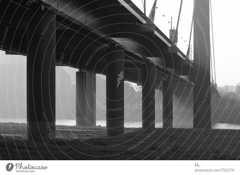 brücke Umwelt Natur Landschaft Schönes Wetter Flussufer Düsseldorf Stadt Brücke Architektur Verkehr Verkehrswege Straßenverkehr Wege & Pfade Hochstraße