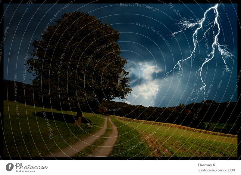 Donnerwetter Blitze Baum Feld Waldrand Wolken Wiese Donnern Blitzlichtaufnahme untergehen Stimmung dunkel Fußweg Wäldchen Sturm Orkan Bad Wege & Pfade thomas