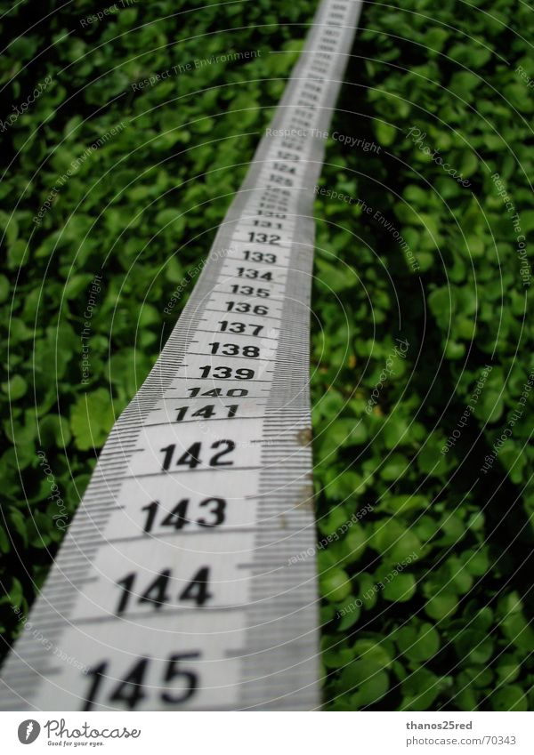 measuring nature measure grass lucky unlucky numbers line