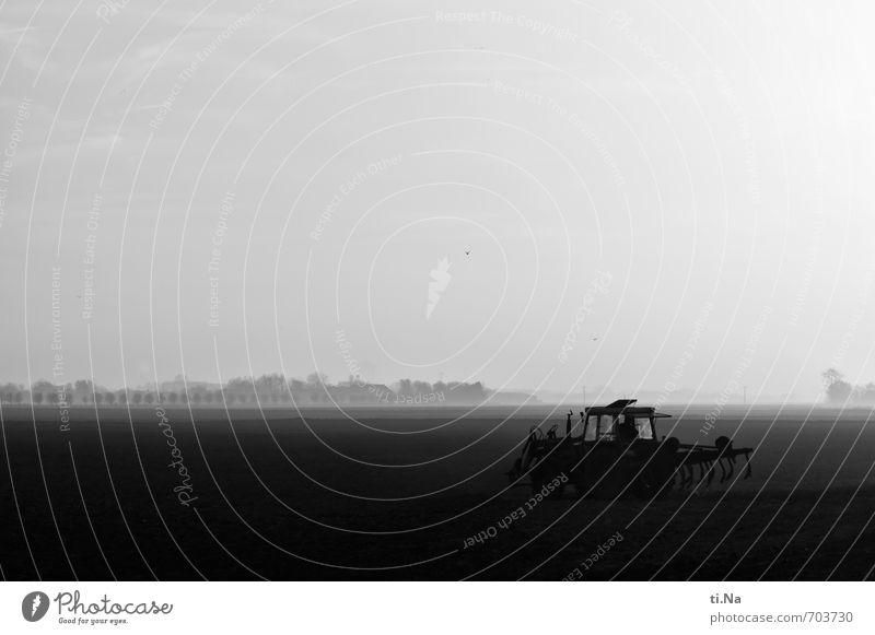 Land und Wirtschaft Maschine Landwirtschaft Landwirtschaftliche Geräte Traktor Landschaft Frühling Schönes Wetter Nebel Feld Dithmarschen