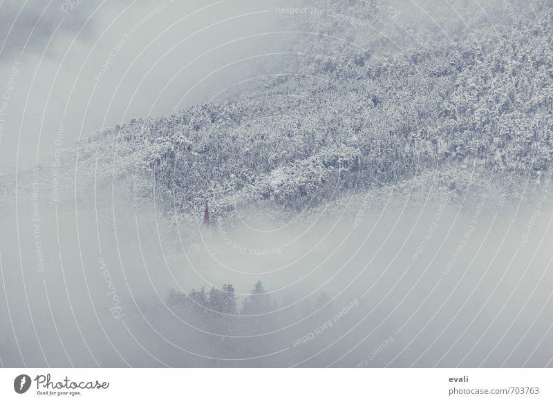 Wintereinbruch über Nacht Umwelt Natur Landschaft Wolken Wetter schlechtes Wetter Nebel Schnee Wald Dorf Kirche dunkel kalt blau grau weiß Religion & Glaube