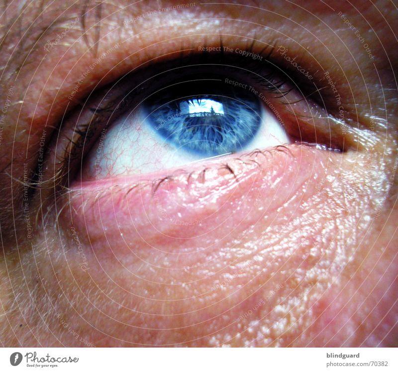 Stummer Schrei Mensch Mann blau ruhig Erwachsene Auge Leben Traurigkeit Gefühle Angst Haut Hilfsbereitschaft Trauer Leidenschaft Schmerz aufwärts