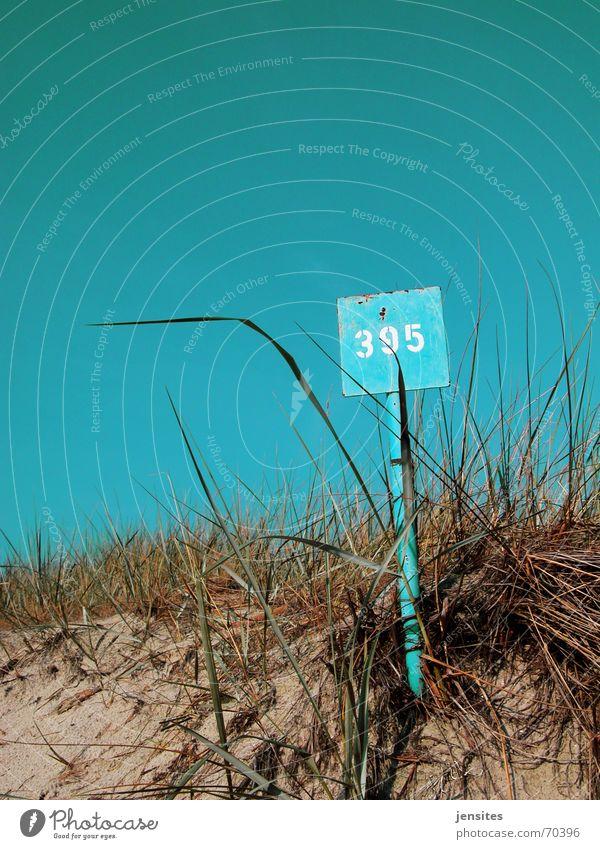 just a little heat III Natur Himmel blau Pflanze Sommer Strand ruhig Gras Wärme Schilder & Markierungen Ziffern & Zahlen Physik Rost türkis Stranddüne
