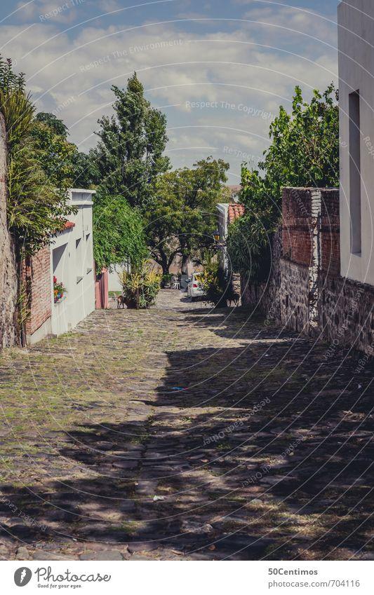 Pflasterstrassen in der Altstadt von Colonia, Uruguay Ferien & Urlaub & Reisen Sommer Baum Erholung ruhig Ferne Straße Gebäude Häusliches Leben Zufriedenheit