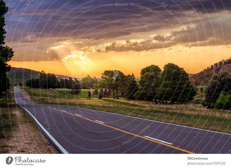sunset on the Highway Natur Ferien & Urlaub & Reisen Sommer Sonne Baum Landschaft ruhig Wolken Ferne Leben Straße Freiheit Stimmung Verkehr frei Klima