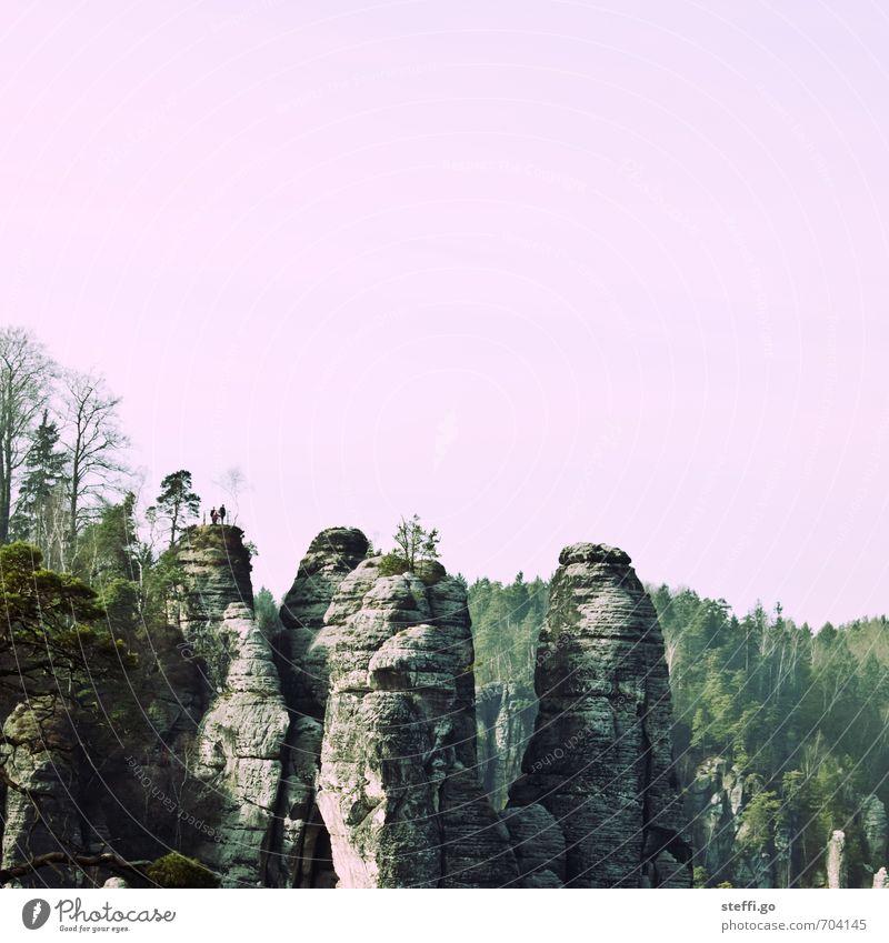 rosa Spitzen Natur Ferien & Urlaub & Reisen Landschaft Ferne Wald Berge u. Gebirge Freiheit natürlich außergewöhnlich Felsen groß Tourismus wandern Ausflug