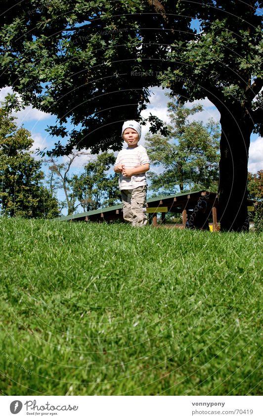 PIT Kind Himmel Baum Freude Junge Gras Berge u. Gebirge Glück lachen warten maskulin Fröhlichkeit Hügel Mütze drehen aufwärts