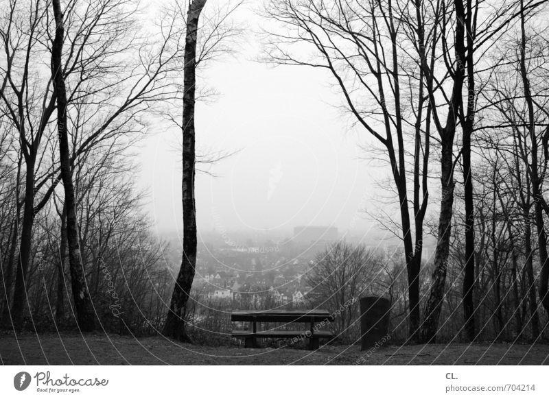schöne aussicht Umwelt Natur Landschaft Himmel Herbst Winter Baum Wald trist ruhig Traurigkeit Sehnsucht Fernweh Einsamkeit Hoffnung Horizont Perspektive