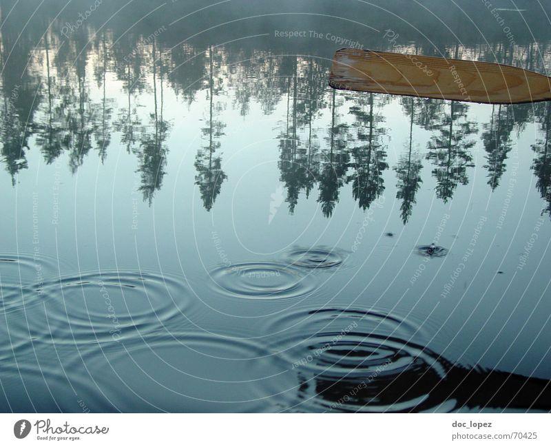 Wasserspiegelkreise ruhig Wassertropfen Baum Küste See sanft Finnland Paddel Wasserkreise Reflexion & Spiegelung Im Wasser treiben Wasseroberfläche