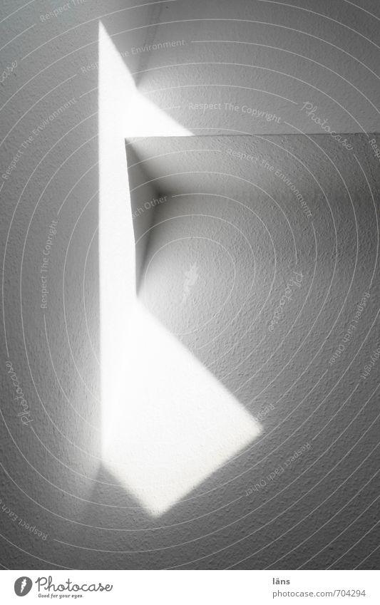 Vogel Häusliches Leben Wohnung Tapete Linie leuchten stehen wandern eckig weiß einzigartig Inspiration Ecke hell Lichterscheinung Wand Schwarzweißfoto