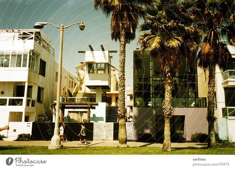 Venice Beach Strand modern USA Palme Kalifornien Los Angeles