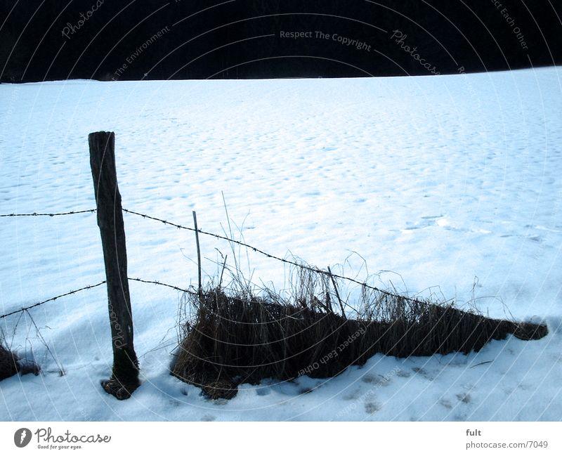 Zaunende Holz Winter Dämmerung Schnee