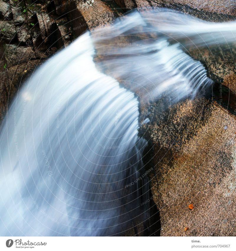 ohrenbetäubende Ruhe Umwelt Natur Landschaft Wasser Herbst Berge u. Gebirge Schlucht Wasserfall fallen fest Flüssigkeit nass natürlich Leidenschaft Leben