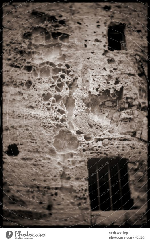 Herr Doktor Lecter... lässt sich das Gesicht liften Wand Fenster Stein Mauer Angst Wut Frankreich Abendessen Festessen Drache Panik Ärger Motte Mörder Toskana