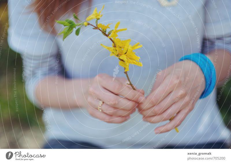 Goldröschen Mensch Frau Natur Ferien & Urlaub & Reisen Jugendliche Pflanze Sommer Junge Frau Hand Umwelt Erwachsene gelb Leben feminin Frühling Blüte
