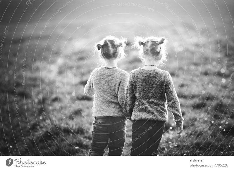 zeit. Mensch feminin Kind Mädchen Geschwister Schwester Kindheit 2 3-8 Jahre Umwelt Natur Frühling Schönes Wetter Wiese Feld entdecken Erholung festhalten gehen