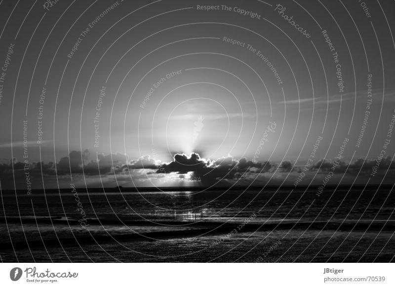 Himmelswunder Sonnenuntergang Meer Wolken Schwarzweißfoto Außenaufnahme Strand Unendlichkeit Licht Nacht dunkel Nordsee Sand Wasser Ferne Lichtstrahl