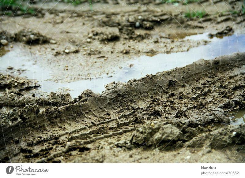 Sommer 2006 Erde schlechtes Wetter Regen dreckig nass braun Schlamm feucht Pfütze Spuren Englischer Garten München Düngung mud dirt dirty wet brown car outside