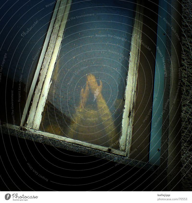 fenster zum hof I Hand dunkel Fenster Tod Traurigkeit Arme trist Trauer Ende Puppe dramatisch Mord Kriminalroman Terror Opfer Thriller