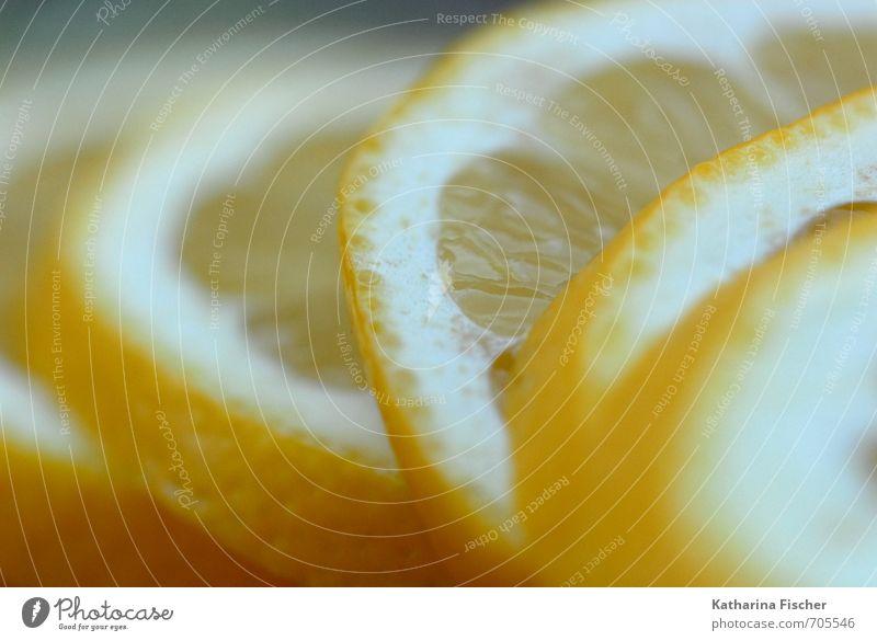 Vitamine - Zitrone weiß Sommer Winter gelb Herbst Frühling Lebensmittel Foodfotografie Frucht exotisch saftig Nutzpflanze sauer fruchtig