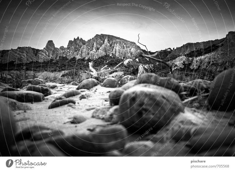 Clay Cliffs Natur Landschaft Felsen Berge u. Gebirge dunkel stachelig Abenteuer Ferien & Urlaub & Reisen clay cliffs Neuseeland Sandstein Schwarzweißfoto