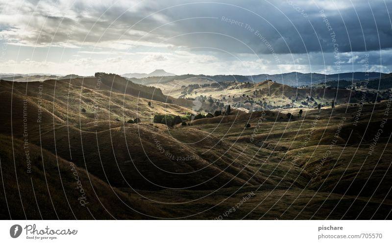 Kurz vor Regen Natur Ferien & Urlaub & Reisen schön Landschaft Wolken dunkel Abenteuer Hügel schlechtes Wetter Neuseeland