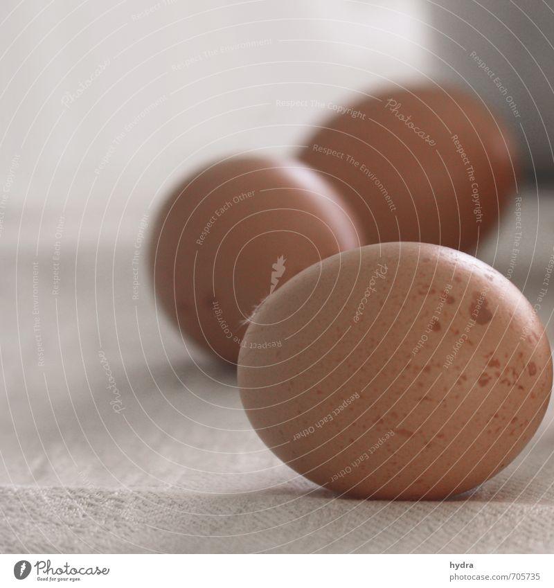 Braune Eier auf Leinentuch warten aufs Eierfärben an Ostern Lebensmittel Eierschale Gesunde Ernährung einfach Gesundheit lecker natürlich braun schön