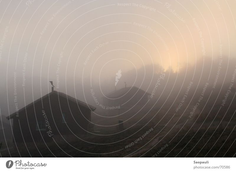 Gleich kommt sie raus ... Ferien & Urlaub & Reisen ruhig Einsamkeit kalt Berge u. Gebirge Holz Wege & Pfade Landschaft braun wandern Nebel Afrika Hütte feucht