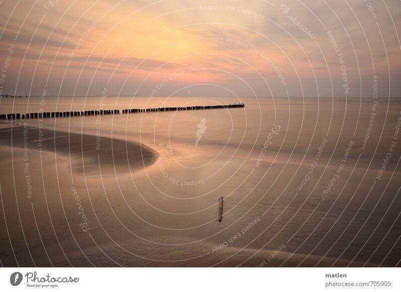 Kurs NW Landschaft Sand Wasser Himmel Wolken Nachthimmel Sonne Sonnenaufgang Sonnenuntergang Frühling Klima Wetter Schönes Wetter Küste Strand Meer Menschenleer