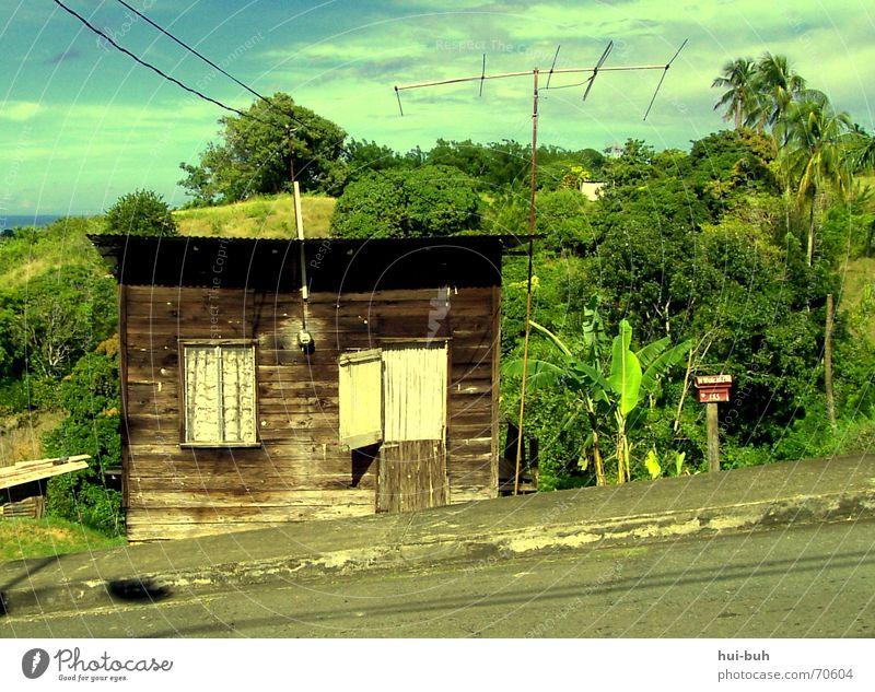 haus am hang Haus Berghang Hügel Urwald Tobago Elektrizität kaputt Bruchbude Dach Fenster Asphalt grün braun Holz Eisen Backstein Meer heiß Mittag Schwüle