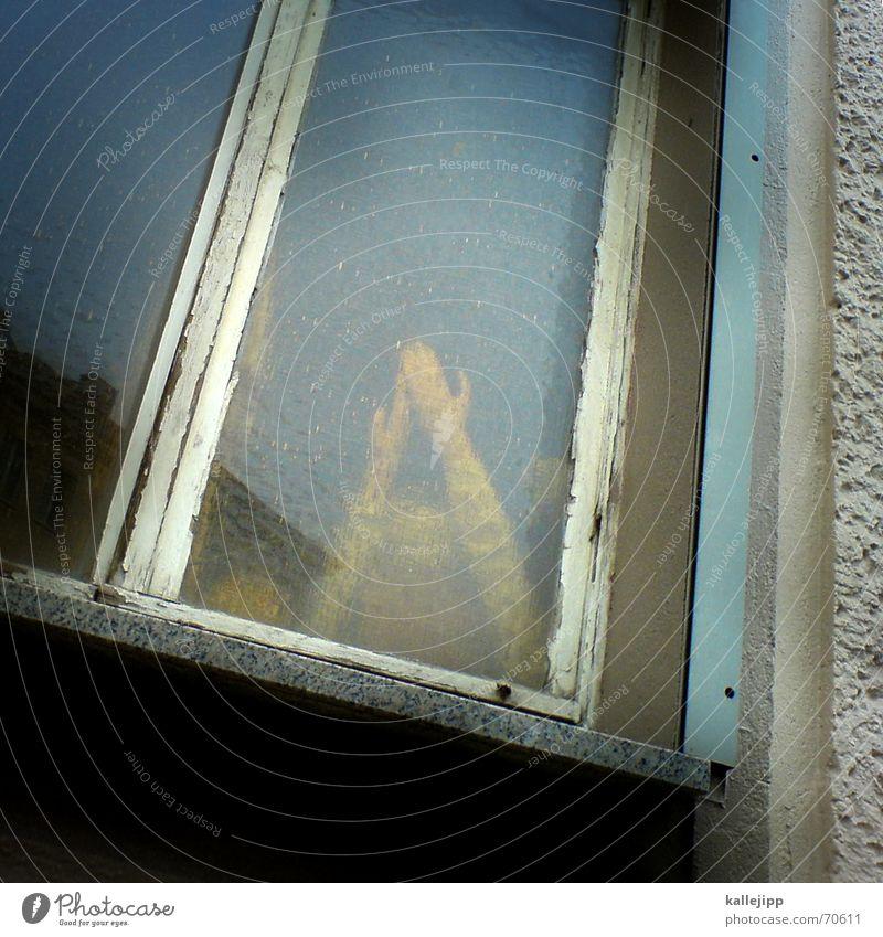 fenster zum hof II Handy-Kamera Fenster Entführung Geisel dramatisch dunkel Fensterrahmen Thriller Trauer Terror Zeuge Täter Tatort Kriminalroman Puppe Arme