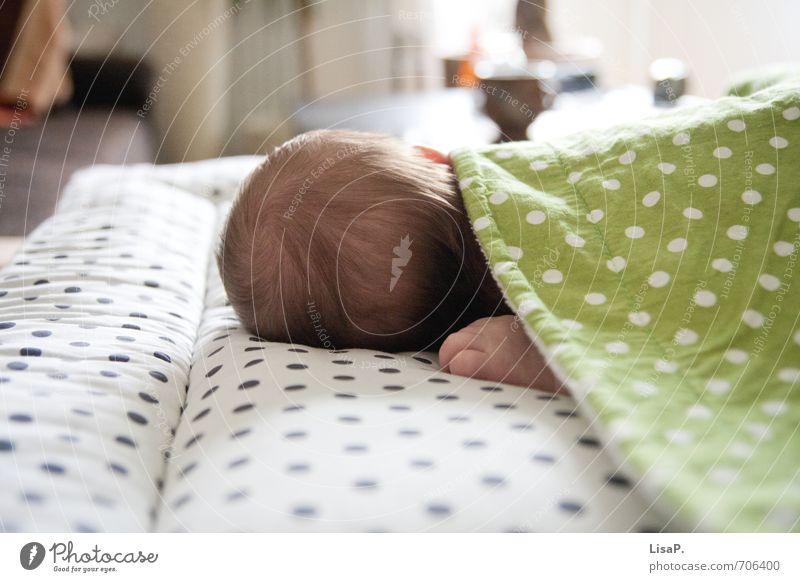 Schlaf schön! Kind Baby Kopf Hand Finger Hinterkopf 1 Mensch 0-12 Monate schlafen Glück natürlich grün weiß Zufriedenheit Sicherheit Geborgenheit Warmherzigkeit