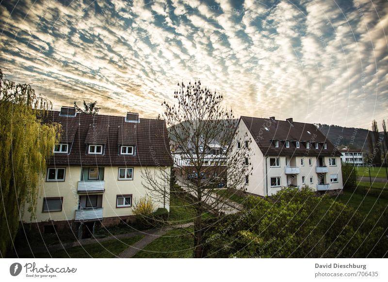 Morgenidylle Himmel blau Stadt weiß Pflanze Sommer Wolken Haus schwarz gelb Fenster Frühling Gebäude braun Garten Horizont