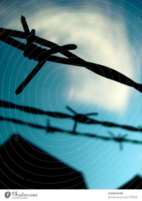 FREIHEIT! | stacheldraht himmel hoffnung wolken romantik prison Himmel Wolken Freiheit Wege & Pfade Hoffnung geheimnisvoll Grenze Zaun Flucht gefangen