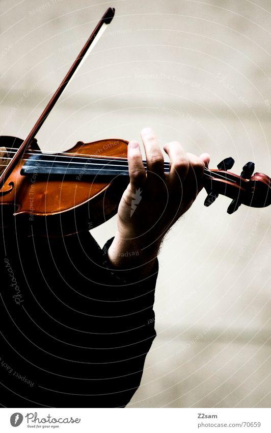 the violonist left hand Mann Musik Geige Hand streichen Spielen braun ruhig Saite Mensch Musiker Arme play black