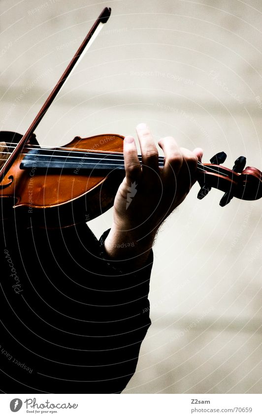 the violonist left hand Mensch Mann Hand ruhig Spielen Musik braun Arme streichen Musikinstrument Musiker Geige Saite