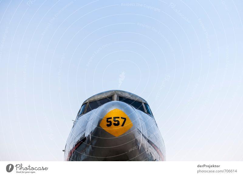 Es dröhnten die Motoren Technik & Technologie Luftverkehr Flugzeug Passagierflugzeug Propellerflugzeug Flughafen Gefühle Freude Tapferkeit Coolness Optimismus