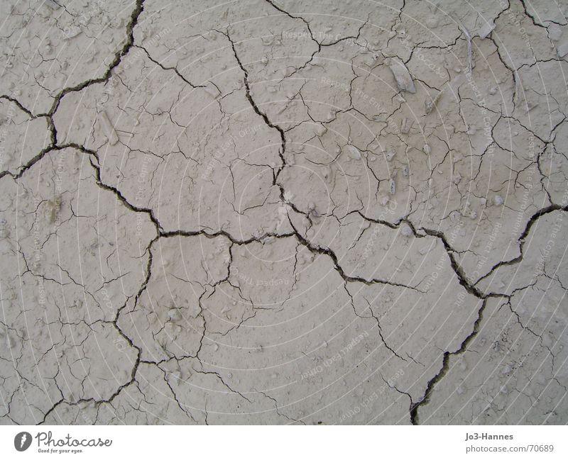 Blitze im Dreck Dürre Bruch Teilung dehydrieren Lehm trocken heiß Physik Sommer Schlucht Vogelperspektive Vergänglichkeit Strukturen & Formen Ödland Riss
