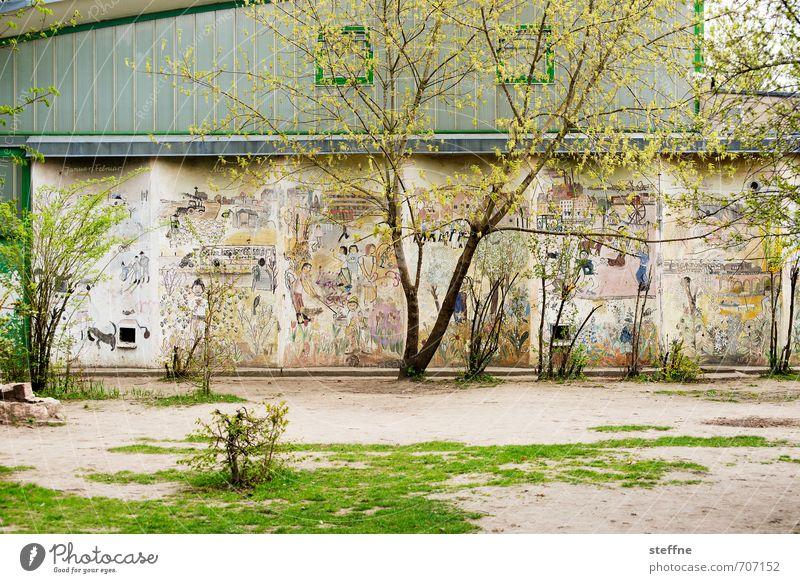 HALLE/S.-TOUR | sportHALLE Frühling Baum Halle (Saale) Stadt Fassade schön Schule Sporthalle Graffiti Wiese mehrfarbig Farbfoto Außenaufnahme