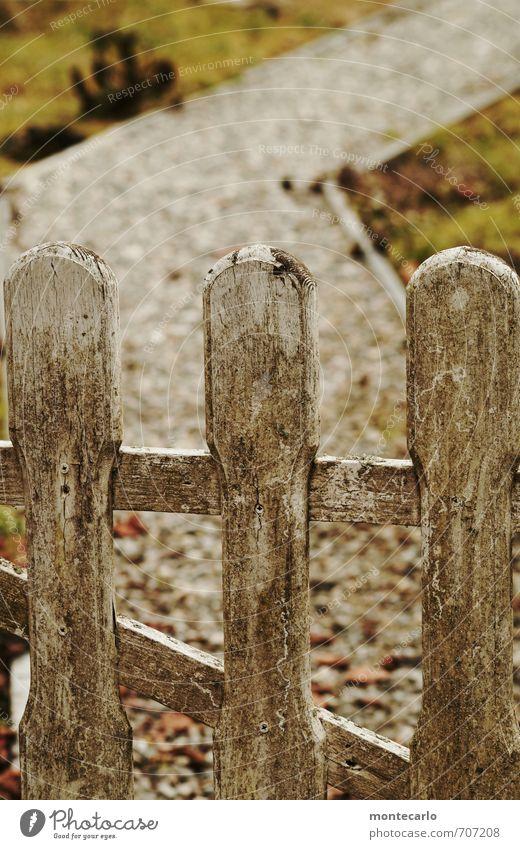 Tor zum Wochenende Umwelt Natur Erde Frühling Schönes Wetter Gras Moos Garten Gartentor Wege & Pfade Stein Holz alt authentisch dreckig einfach einzigartig