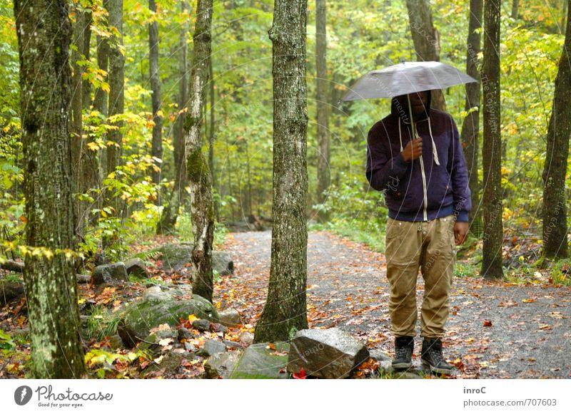 The Backwoods of Canada Mensch Natur Jugendliche grün Baum ruhig 18-30 Jahre Junger Mann Wald Umwelt Erwachsene Leben Gefühle Freiheit Stimmung maskulin