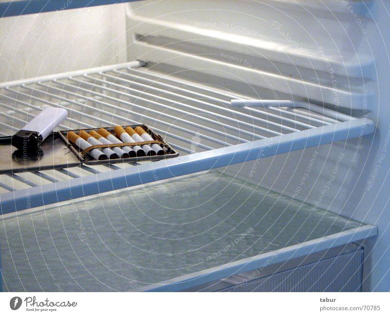 Gesundes statt Gammelfleisch Ernährung Lebensmittel leer Küche Zigarette Kühlschrank Feuerzeug