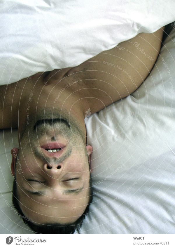 Schlaf, Kindlein schlaf... Mann Gesicht Auge Haare & Frisuren träumen Haut schlafen Pause Bett Decke Schulter Polster Geschnarche Leinentuch